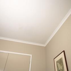 Mathys Paracem Deco Ceiling