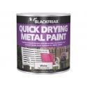 Blackfriar Quick Drying Metal Paint