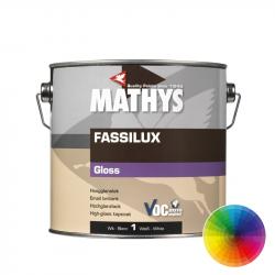 Mathys Fassilux Gloss