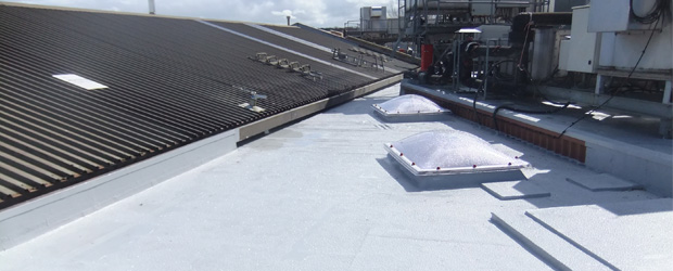 How-to-Paint-a-Flat-Roof-2
