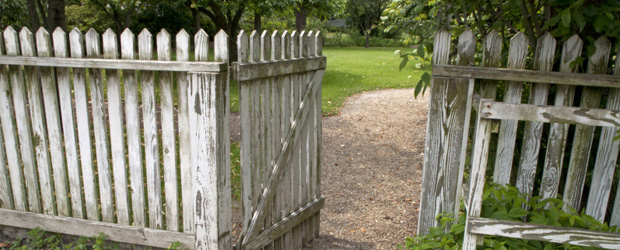 How-to-Paint-A-Fence-4