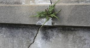 Concrete-crack-repair