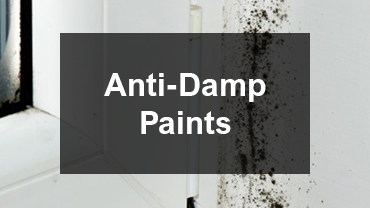 mobile-anti-damp-paint.png