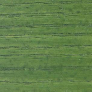 844 Mistletoe